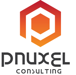 Pnuxel Consulting. Service delivery with excellence...
